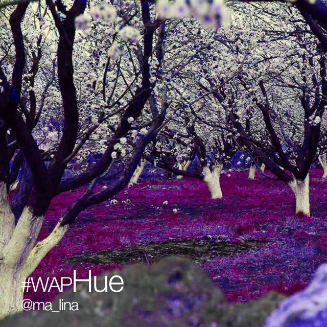 Color your world enter the hue effect weekend art project for Weekend art projects
