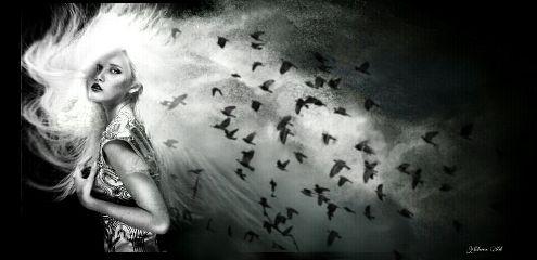 artisticselfie blackandwhite ravens woman darkart