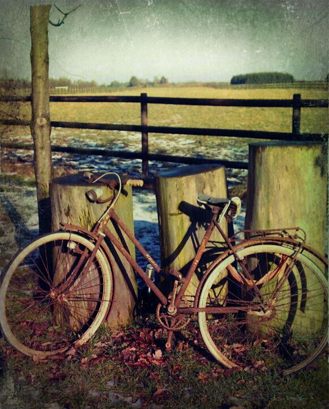 bike images