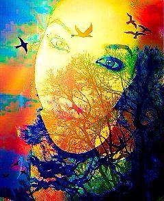 colorsplash soulful infinity