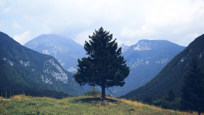 The Great Nature In Slovenia