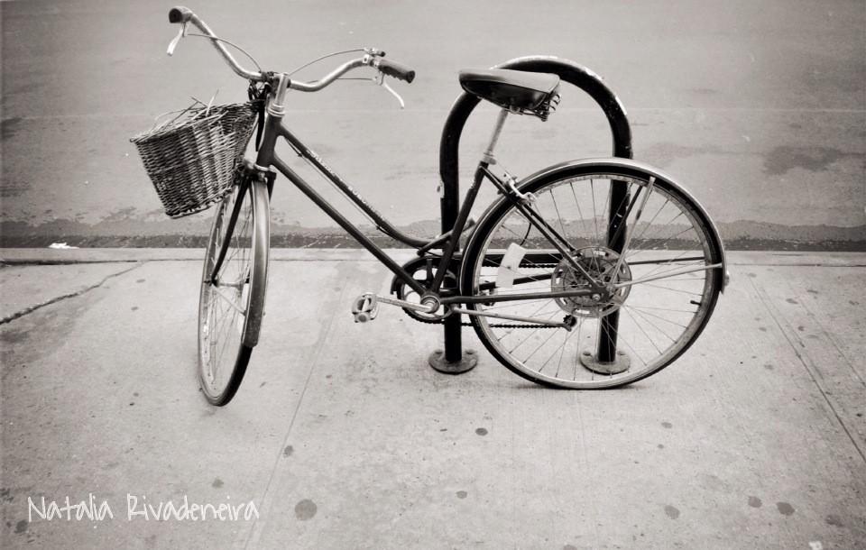 #brooklyn  #bikes