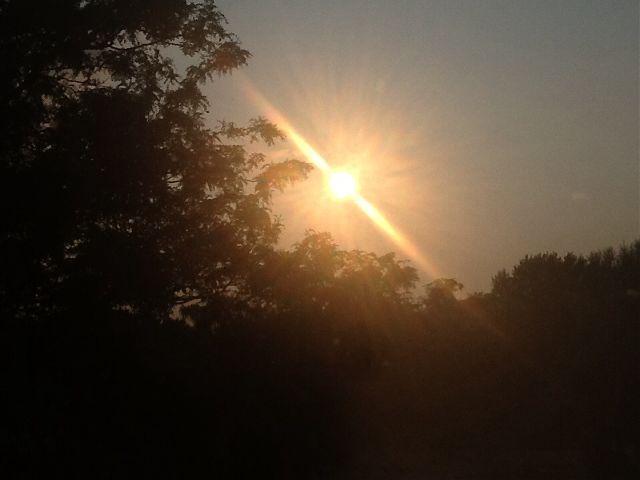 sunrays sun sunray noedit photography