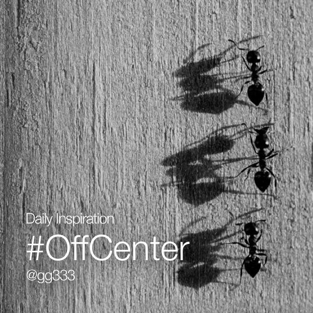 #offcenter photography composition